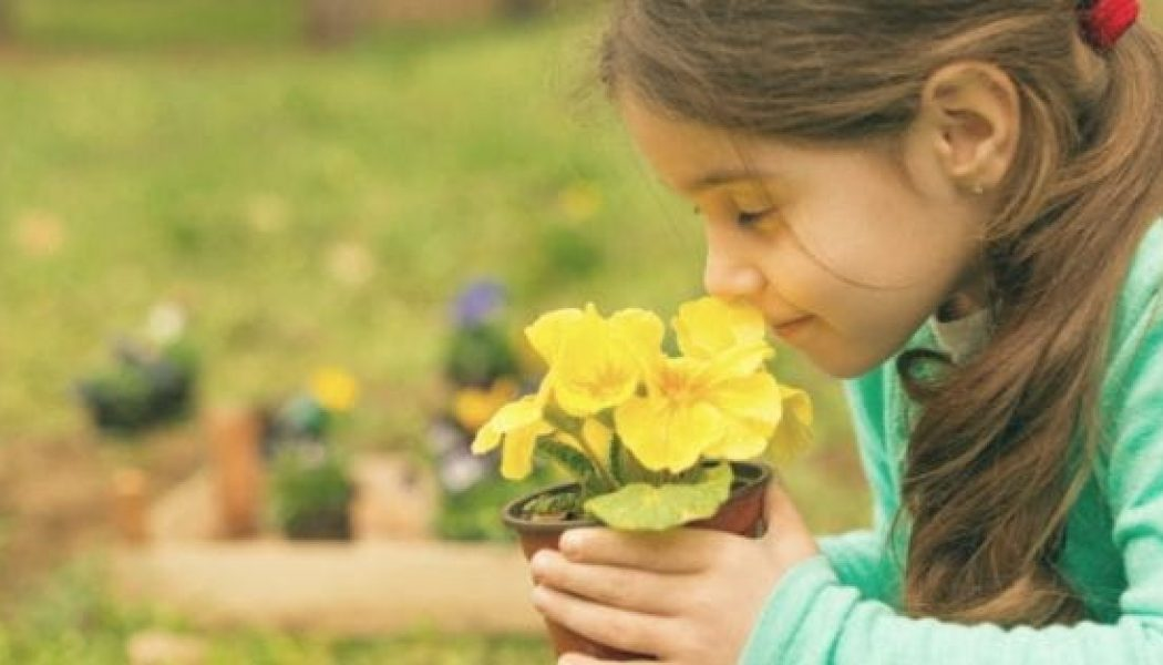 God's Call to Protect Children