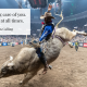 Joyful Connection with All God's Creatures: Bull Rider Cody Nance and HIS Haven Ranch