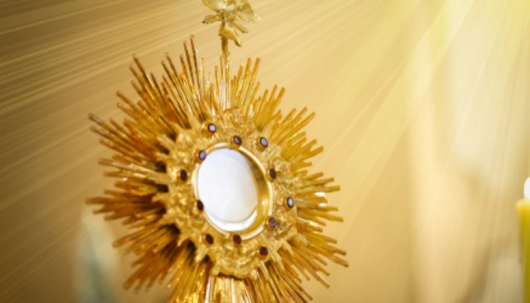A few suggestions for New Year's resolutions for concerned Catholics…