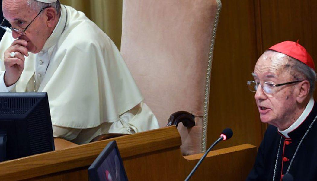 Cardinal Hummes: Pope's Pan-Amazon apostolic exhortation to be published soon…