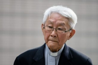 "Hong Kong's Cardinal Zen pens letter ""begging on knees"" for Church to tackle religious oppression in China…"
