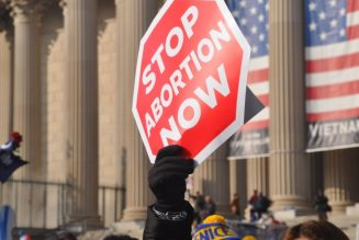 More than 200 members of Congress urge Supreme Court to reconsider Roe v. Wade…