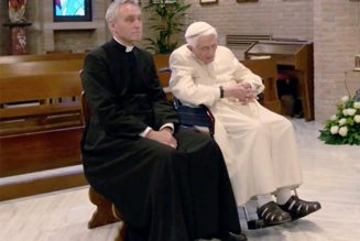"New documentary offers rare glimpse of ""noticeably frailer"" Benedict XVI's life in Vatican Gardens…"