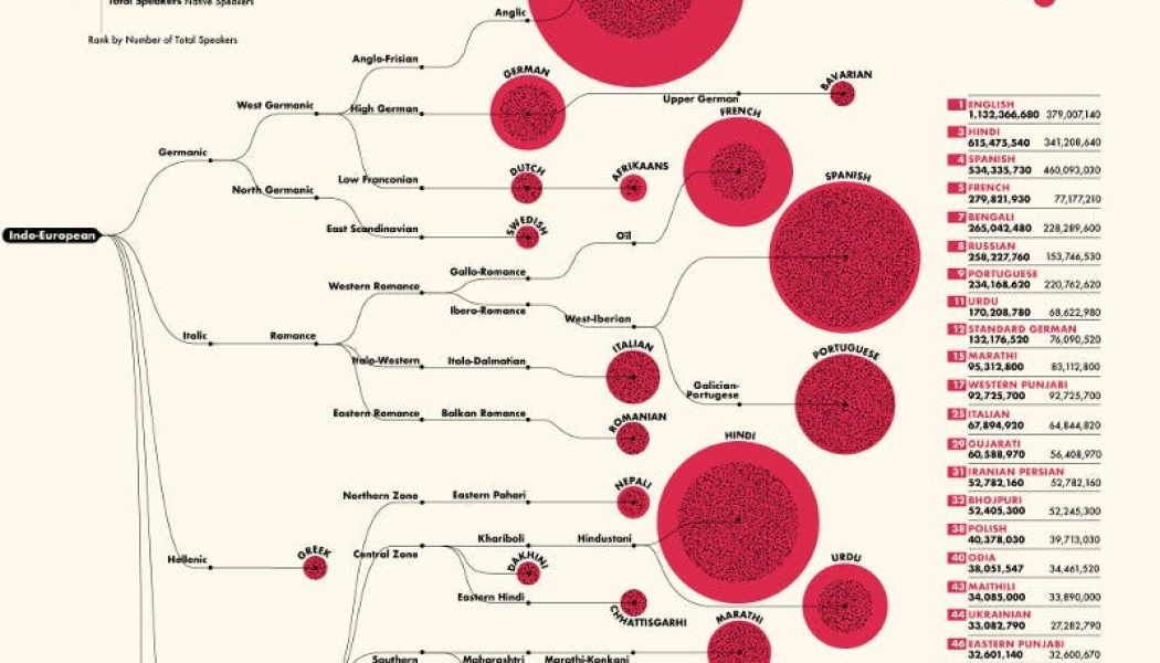 A diagram of the 100 most-spoken languages in the world…