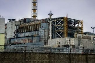Chernobyl shocker as fungi that eats radiation found inside nuclear reactor…
