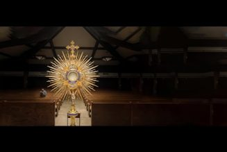 'The Veil Removed' — A 7-minute short film that will change the way you see the Holy Mass…