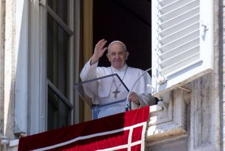 """Pope's Sunday Angelus: """"There is no true love without the cross""""…"""