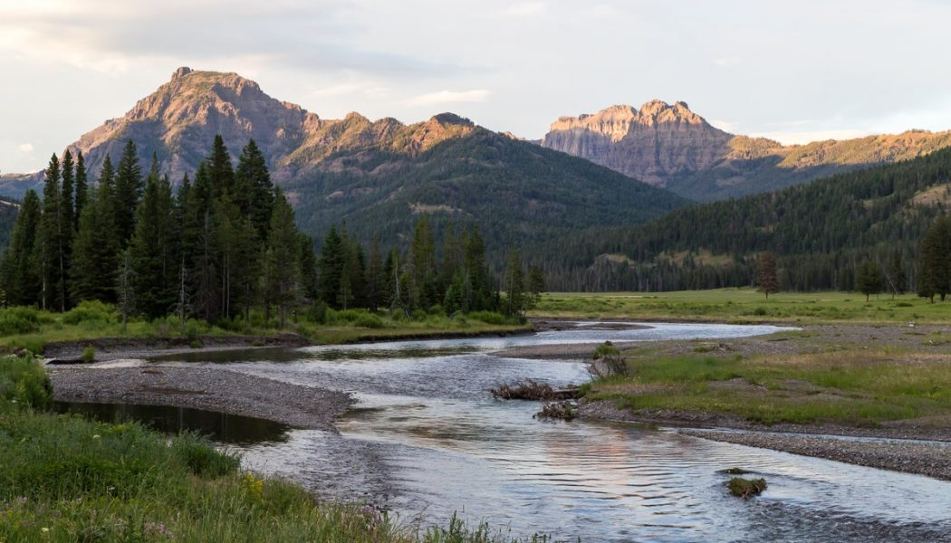 This Wyoming creek flows into two oceans…