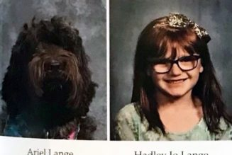 What is a labradoodle doing in this Catholic school yearbook?