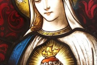 August is dedicated to the Immaculate Heart of Mary. Here's how we can be devoted to her…..
