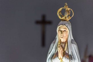 Cardinal to consecrate North Korean capital Pyongyang to Mary on Solemnity of the Assumption…