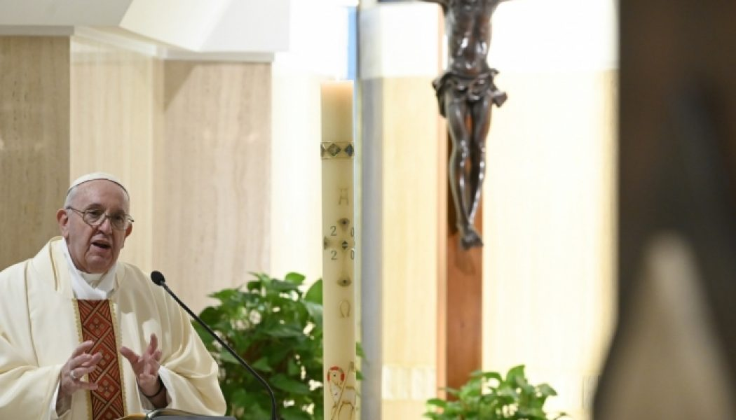 Pope's Sunday Angelus: The Cross reminds us of the sacrifices of the Christian life…