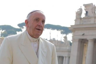 Pope Francis says pandemic is 'a wake-up call' to care for creation…