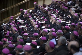 Pope reveals why he said 'no' to married priests after Amazon synod…