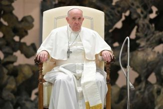 Pope Francis appeals for peace in Cameroon after deadly school attack…