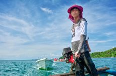Cambodia: from 'killing fields' to 'living fields'