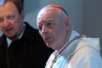 McCarrick Report: When one mother had to speak up…