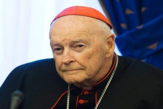 Vatican releases long-awaited McCarrick Report…