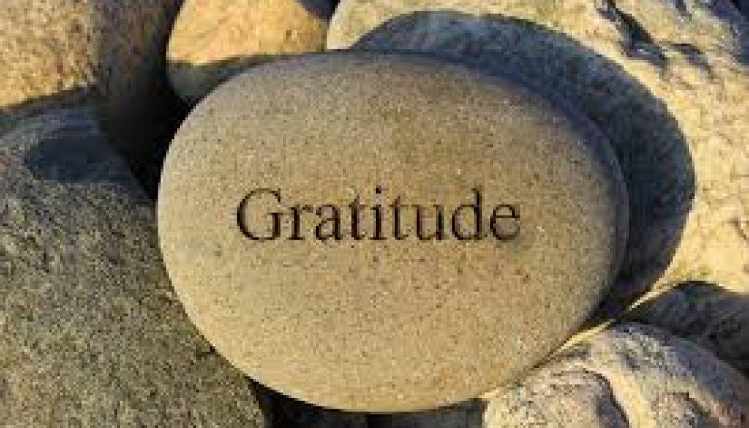 Embracing Gratitude in Every Season