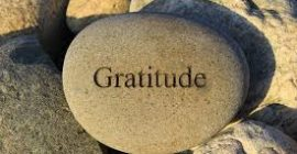 Embracing Gratitude in Every Season