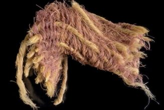 Ancient fabric discovery shows how King David and King Solomon may have dressed…