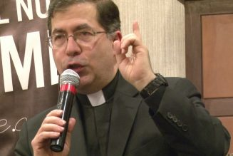 """Who is responsible for Fr. Frank Pavone and other """"wandering priests"""" of social media?"""