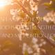 April Scripture Writing Guide (2021)