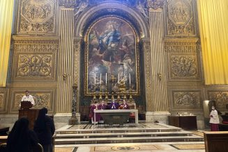 'Like a museum': Dead silence in St. Peter's Basilica as suppression of individual Masses comes into force…