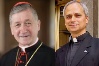 Prevost and Cupich: Can the bishops judge themselves?