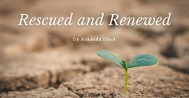 Rescued and Renewed