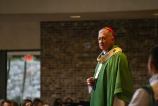 """Chicago's Cardinal Cupich issues final warning over """"tactics of intimidation"""" by Father Pfleger's parish…"""
