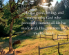 Psalm 104 and the Goodness of God