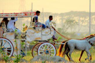 How God healed a Roma horse