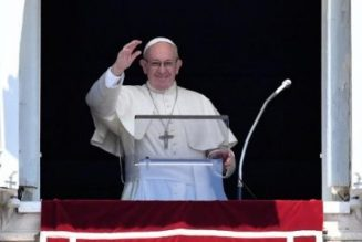 """Pope's Sunday Regina Coeli: Jesus, the true vine, """"needs our witness;"""" and faithful urged to offer """"a Hail Mary in their daily Rosary"""" for Myanmar…"""
