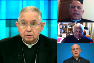 U.S. Bishops continue intense debate over timing and impact of proposed document on Holy Communion…