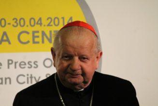 Vatican confirms probe of negligence claims against Polish Cardinal Dziwisz…