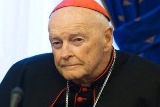 Disgraced Ex-Cardinal Theodore McCarrick Criminally Charged with Sexual Assault of a Minor…