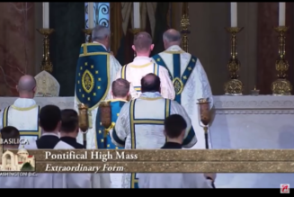 US Bishops Weigh Next Steps on Traditional Latin Mass While Others Fear Further Division…