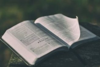 Are some of the Psalms boastful?