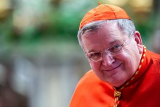 Cardinal Burke tweets that his condition is improving, says he now faces an 'intensive rehabilitation'…