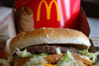 Russian woman sues McDonald's for $14 after complaining that a cheeseburger ad was so irresistible it caused her to break her fast during Lent…