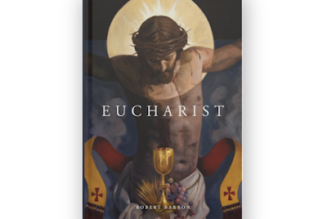 'Eucharist,' by Bishop Robert Barron, is an excellent explanation of the Blessed Sacrament, Holy Sacrifice and Real Presence…