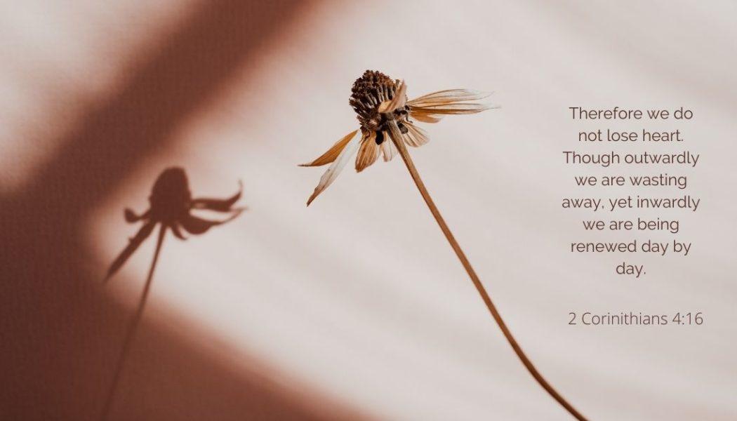 October Scripture Writing Guide (2021)
