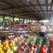 50 states, 50 farmers' markets: Here's the top spot in each state for seasonal produce…..